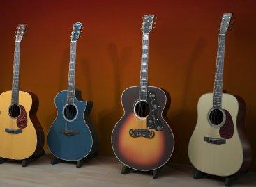 Cuide bien de su stock de guitarras