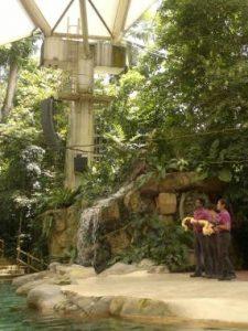 Zoo_singapore2