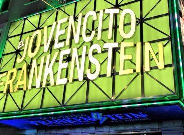 DAS Audio en musical El Jovencito Frankenstein de Broadway, realizado en España