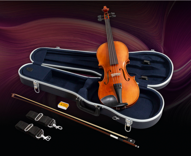 violino-732×600