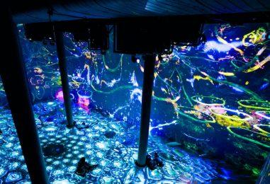 L-Acoustics crea experiencia de audio inmersivo en ARTECHOUSE NYC
