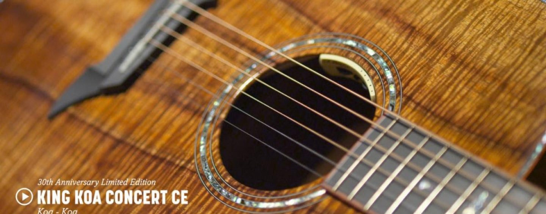Breedlove Guitars cumple 30 años y lanza guitarras de aniversario